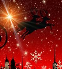 christmaslightsfeat