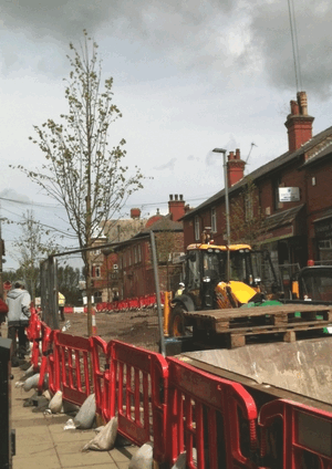 leyland_street_prescot_new_trees