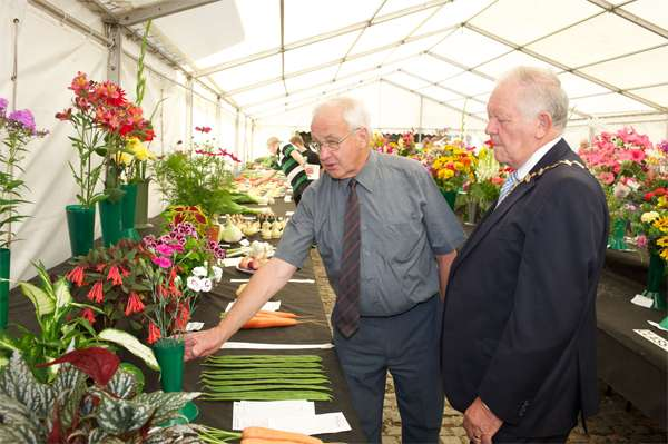 knowsley_flower_show_2013