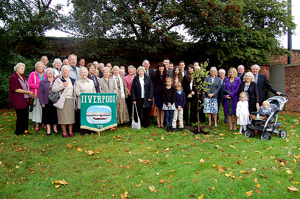 Silver_birch_tree_rainhill_village_hall